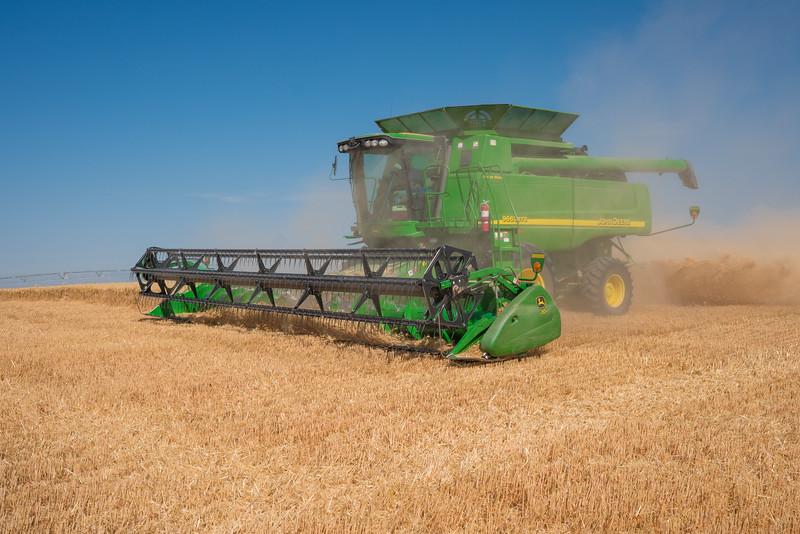 Webster Wheat Harvest 2016-16