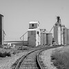 Webster Wheat Harvest 2016-33