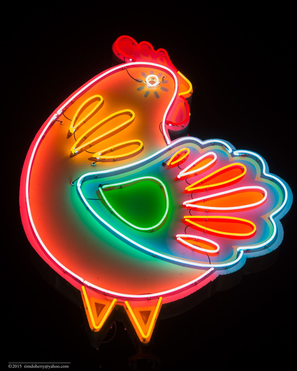 Neon chicken in Austin