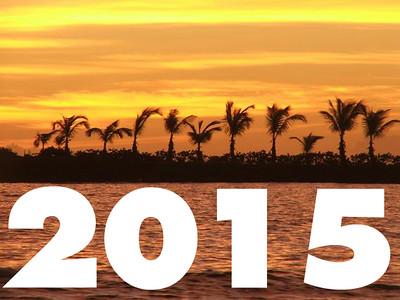 New Directions 2015 Tour  Photos