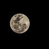 Super-moon, 14th November 2016.