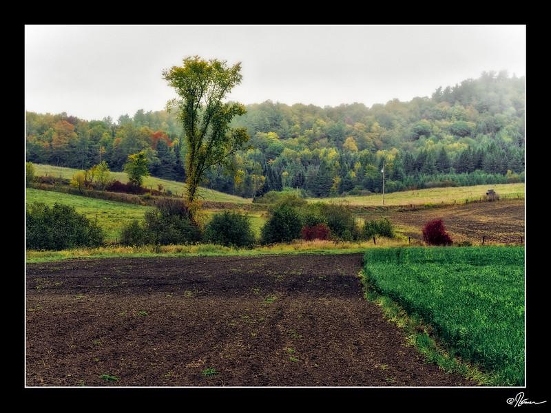 PA020075_FarmHop