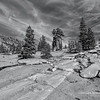 Sierra Landscape 2