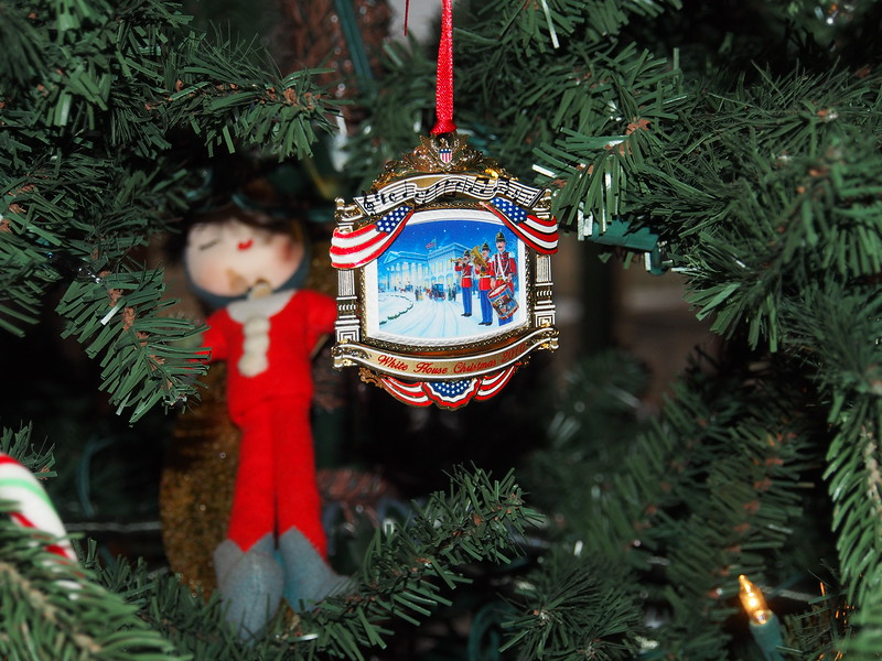 Hanging on the Riski's Christmas Tree
