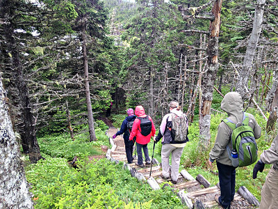 Canada: Nfld St. John's and Trinity Hike