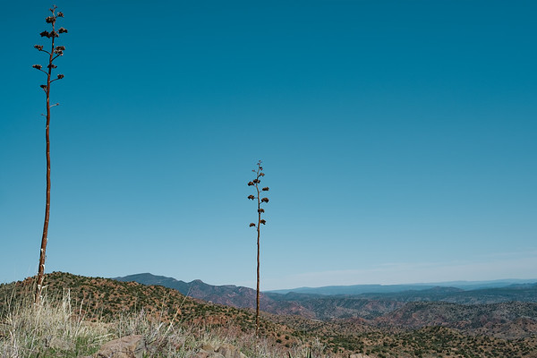 Tonto National Forest