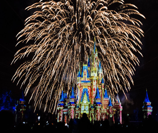 2018-01-14 Magic Kingdom