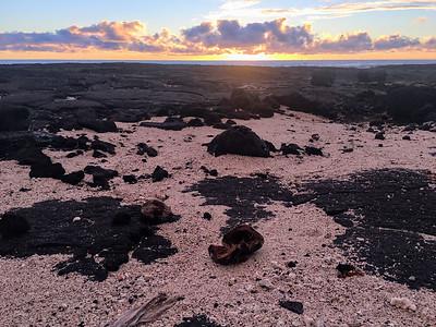 Sunset in Pu'uhonua O Honaunau Park.