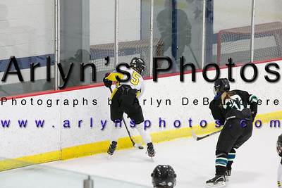 Girls Hockey vs Sartell & Roccori