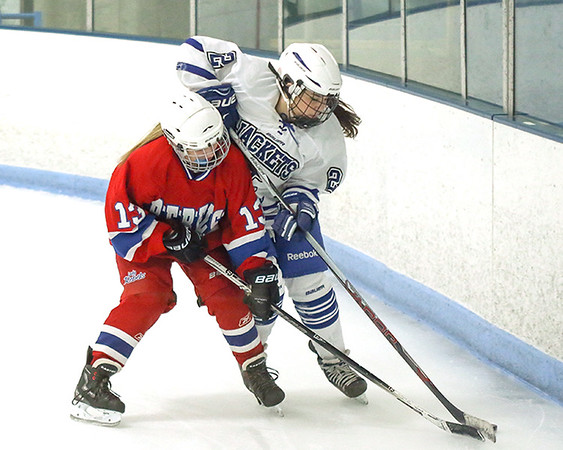 2016-17 Moose Lake Area Girls Hockey