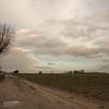 Herman Cloet-landschap3