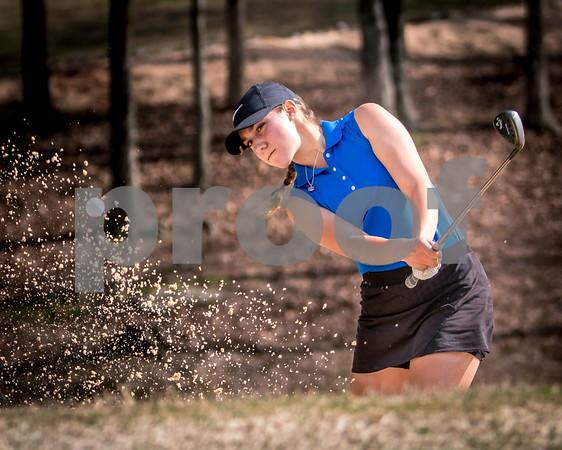 2017 BHS Golf