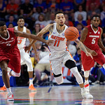 Univeristy of Florida Gators guard Chris Chiozza steals the ball away from Univeristy of Arkansas Razorbacks guard Daryl Macon during the first half as the Gators celebrate senior day defeating the University of Arkansas Razorbacks 78-65 in Exactech Arena at the Stephen C. O'Connell Center in Gainesville, Florida.  March 1st, 2017. Gator Country photo by David Bowie.