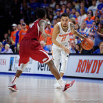 Univeristy of Florida Gators guard Chris Chiozza dribbling during the second half as the Gators celebrate senior day defeating the University of Arkansas Razorbacks 78-65 in Exactech Arena at the Stephen C. O'Connell Center in Gainesville, Florida.  March 1st, 2017. Gator Country photo by David Bowie.