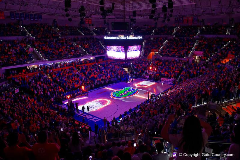 Florida Gators Mens Basketball Kentucky Wildcats Exactech Arena 2017