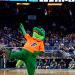 Albert the Mascot rooting on the Gators during the second half as the Gators advance to the second round of 2017 NCAA Tournament with a win over the  East Tennessee State Buccaneers 80-65.  March 16th, 2017.  Gator Country photo by David Bowie.