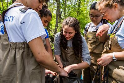 Tamar HowanMcGowan setting up an eel trap.
