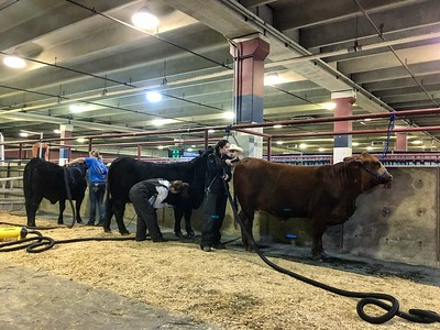 Kenzie Jeter, Gracie Kempken and Olivia Cates getting their girls ready for the show