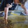 GRs 4 & 5 visit the Seymour Marine Lab