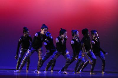 Winter 2017 Dance Show