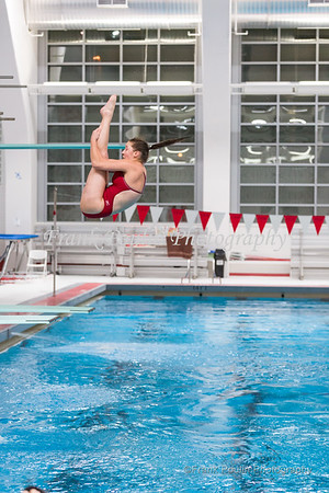WPI swimming & diving 1/18/2017