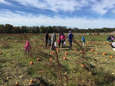 EC Trip to the Pumpkin Patch