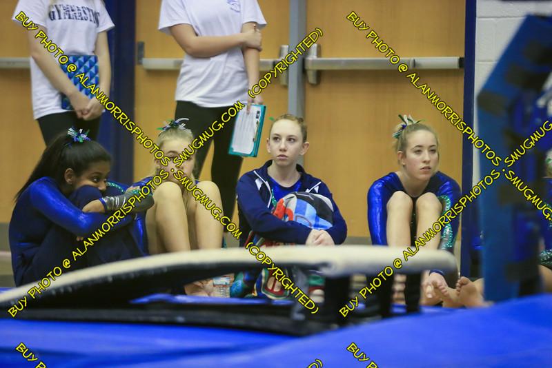 2016-2017 Gymnastics-265