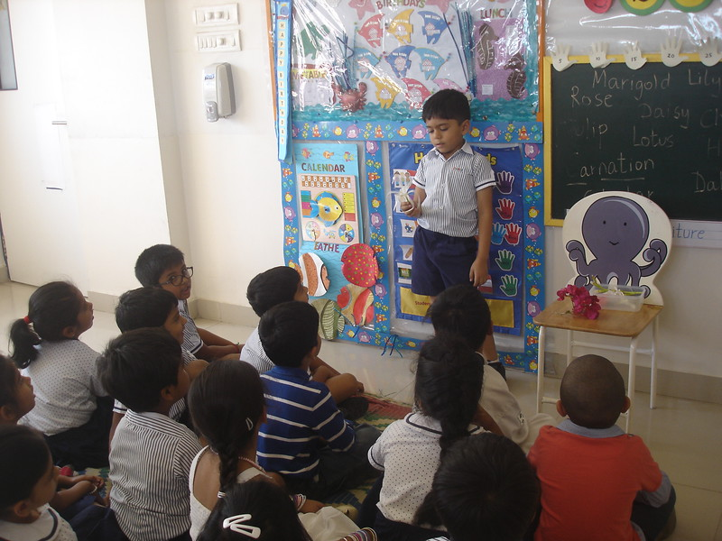 DEVELOPING COGNITIVE AND LANGUAGE SKILLS DURING THE TOPIC DISCUSSION OF SPRING IN BLOOM (4)