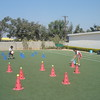DEVELOPING GROSS MOTOR SKILLS DURING PHYSICAL ACTIVITY CLASS (3)