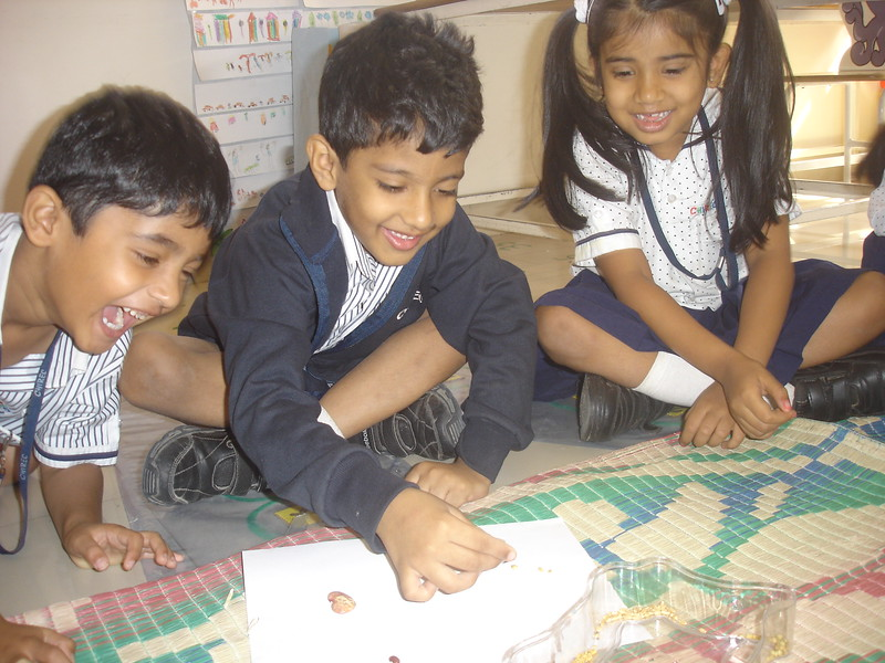BUILDING NUMERACY SKILLS - ASCENDING SIZE WITH SEEDS (2)
