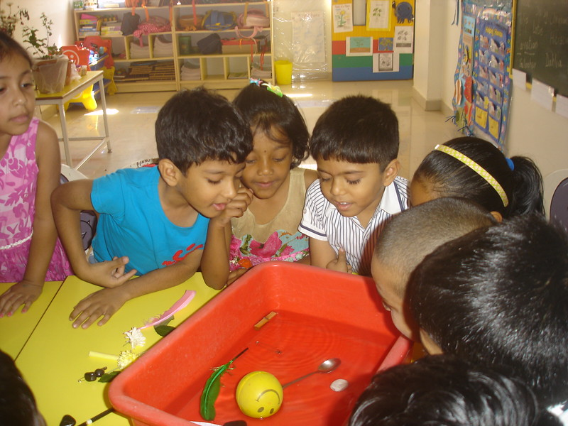BUILDING COGNITIVE SKILLS THROUGH EXPEIMENT - CONCEPT OF FLOAT AND SINK (5)