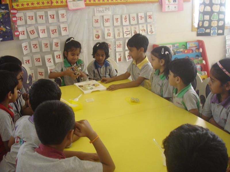 BUILDING COGNITIVE SKILLS THROUGH EXPERIMENT - SOLUBLE AND INSOLUBLE  MIXING SALT, SUGAR AND LEMON IN THE WATER  (7)
