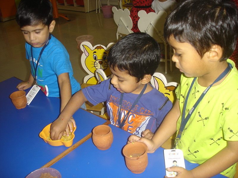 SOWING THE SEEDS ACTIVITY (4)