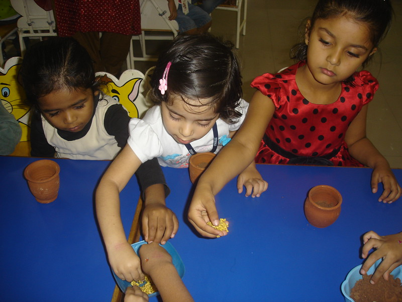 SOWING THE SEEDS ACTIVITY (2)