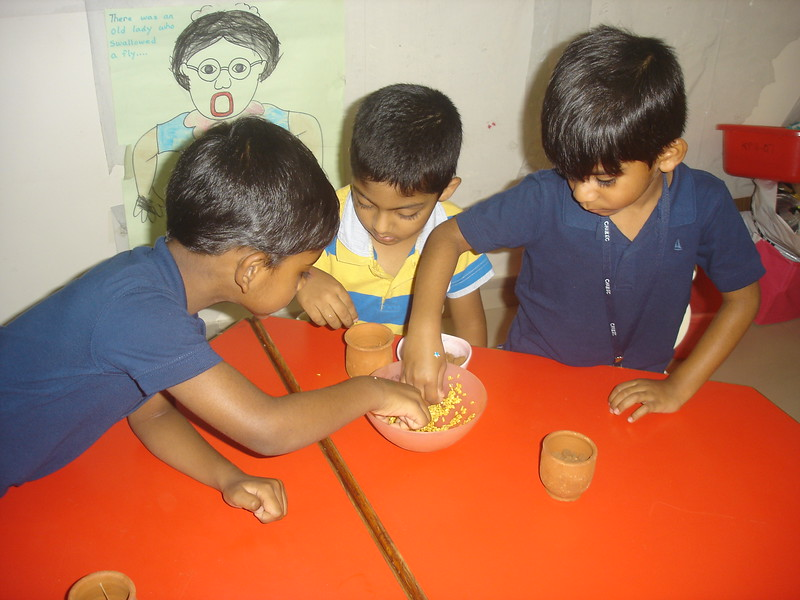 SOWING THE SEEDS ACTIVITY (3)