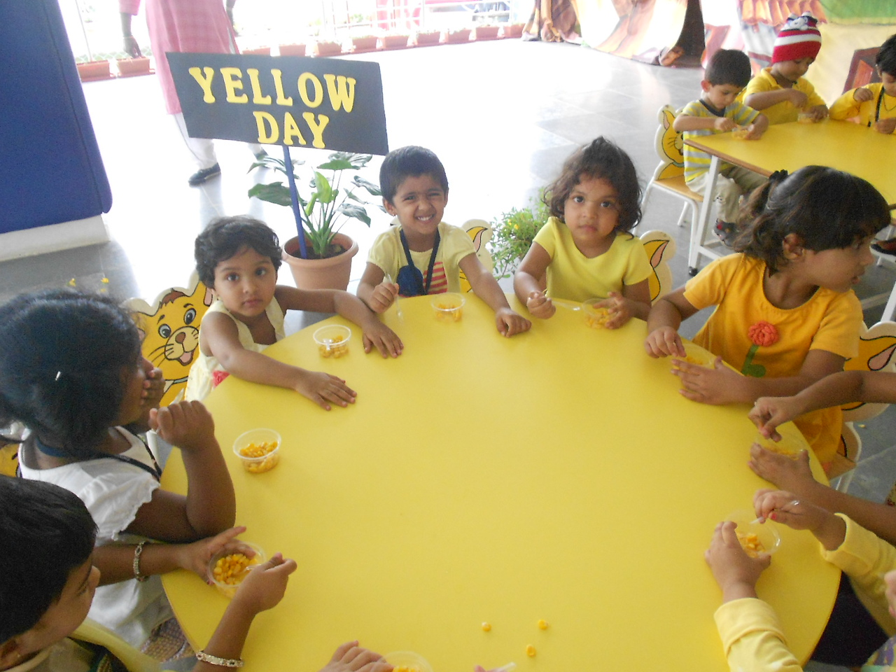 YELLOW DAY CELEBRATIONS (29)
