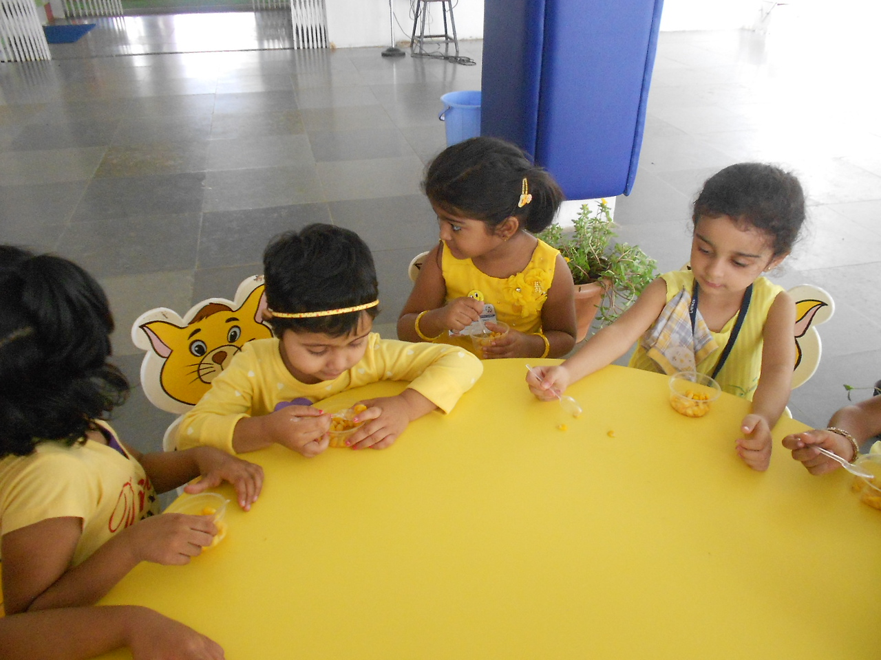 YELLOW DAY CELEBRATIONS (28)