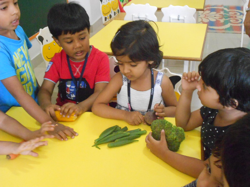 SHOW AND TELL ACTIVITY TOPIC VEGGIE DELIGHT (8)