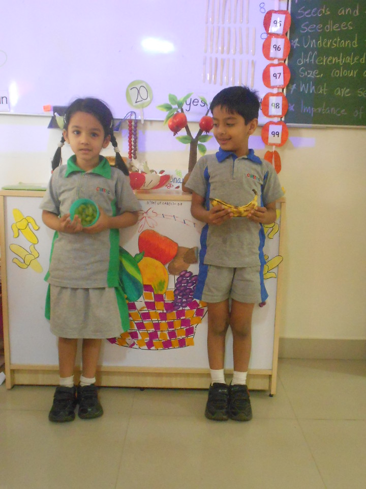SHOW AND TELL  (4)