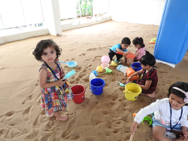 SENSORY EXPERIENCE - KITTIES DURING SAND PLAY TIME