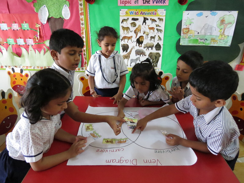 DEVELOPING KNOWLEDGE THROUGH VENN DAIGRAM ACTIVITY (3)