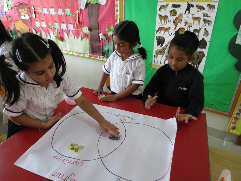 DEVELOPING KNOWLEDGE THROUGH VENN DAIGRAM ACTIVITY (2)