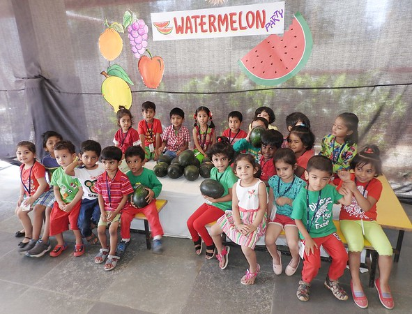 WATERMELON PARTY (5)