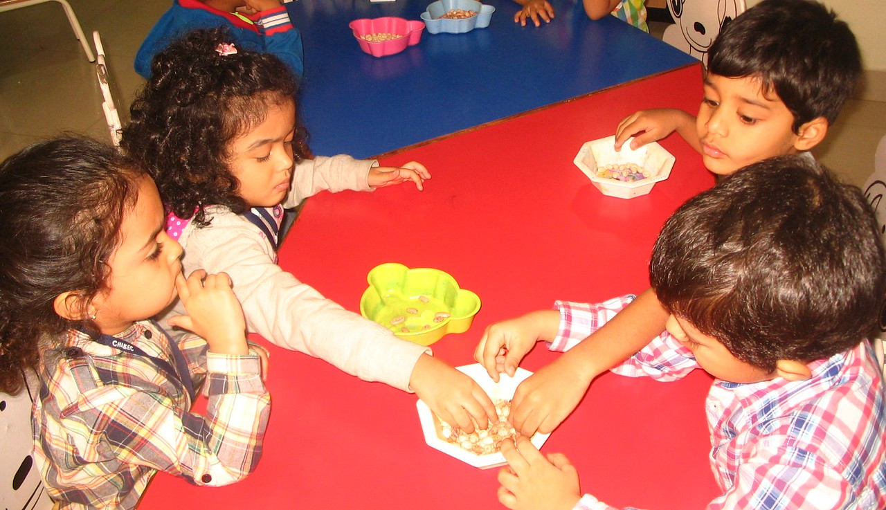 DEVELOPING FINE MOTOR, COGNITIVE AND SENSORIAL SKILLS- SORTING OF SEEDS (4)