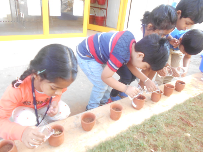 FINE MOTOR AND COGNITIVE SKILLS- LEARNING ABOUT GERMINATION OF A SEED (2)