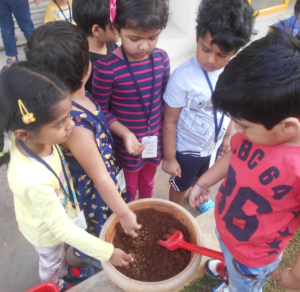 FINE MOTOR AND COGNITIVE SKILLS- LEARNING ABOUT GERMINATION OF A SEED (5)