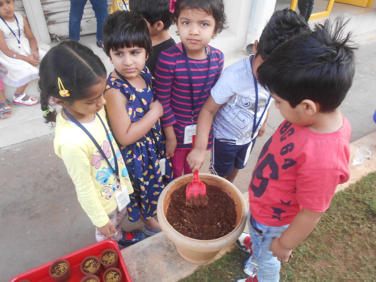 FINE MOTOR AND COGNITIVE SKILLS- LEARNING ABOUT GERMINATION OF A SEED (6)