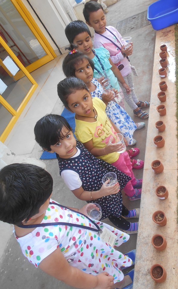 FINE MOTOR AND COGNITIVE SKILLS- LEARNING ABOUT GERMINATION OF A SEED (3)