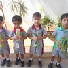 COMMUNICATION SKILLS AND COGNITIVE DEVELOPMENT THROUGH SHOW AND TELL ACTIVITY 1