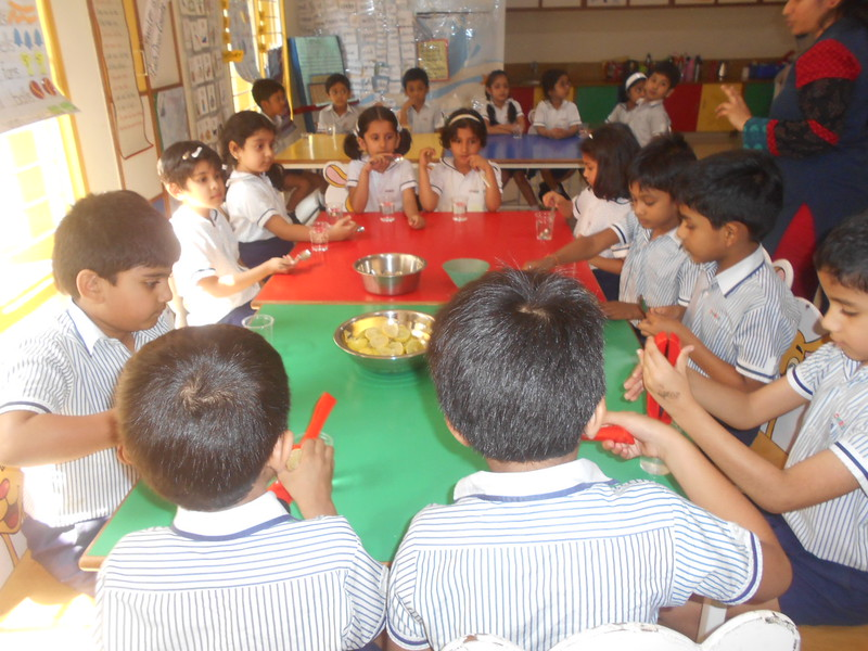 DEVELOPING SENSORIAL SKILLS - CHILDREN RELISHED THE LEMONADES PREPARED BY THEMSELVES (3)